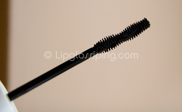 bourjois1001brush