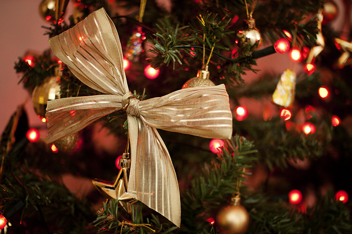 Christmas 2012_03