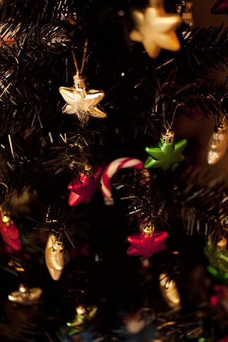 Christmas 2012_04