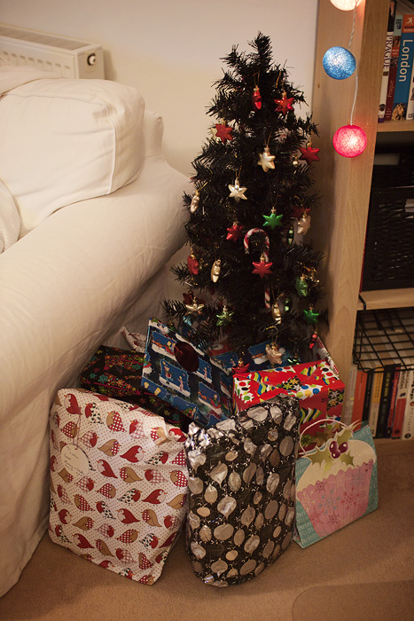 Christmas 2012_06